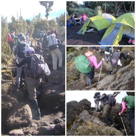 day 2- kilimanjaro